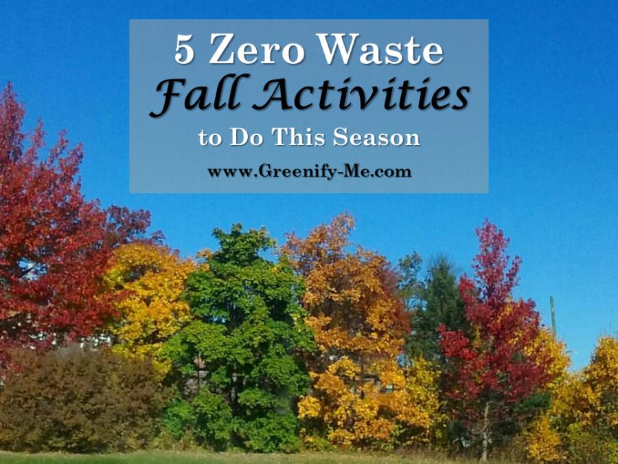 5 Zero Waste Fall Activities to Do This Season