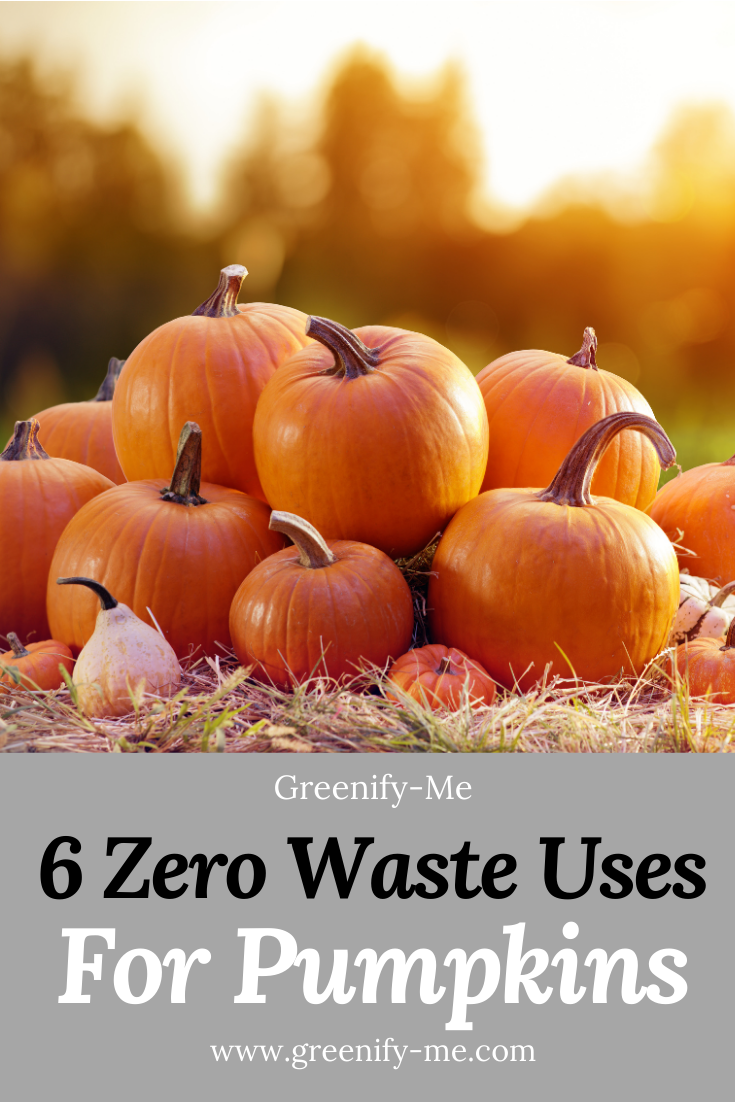 6 Zero Waste Uses For Pumpkins