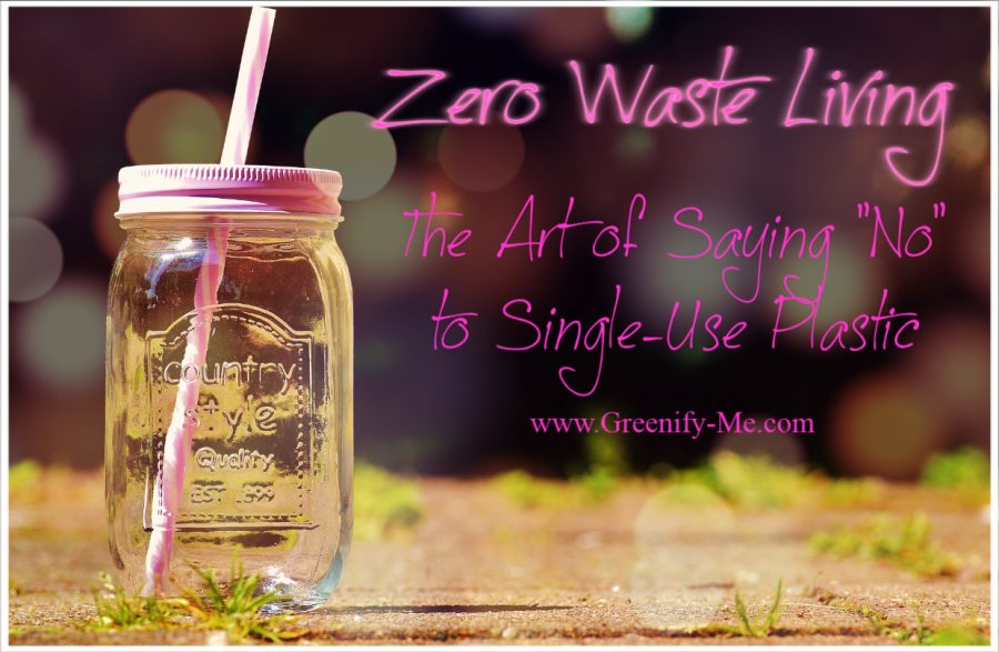 "Zero Waste Living: The Art of Saying ""No"" to Single-Use Plastic"