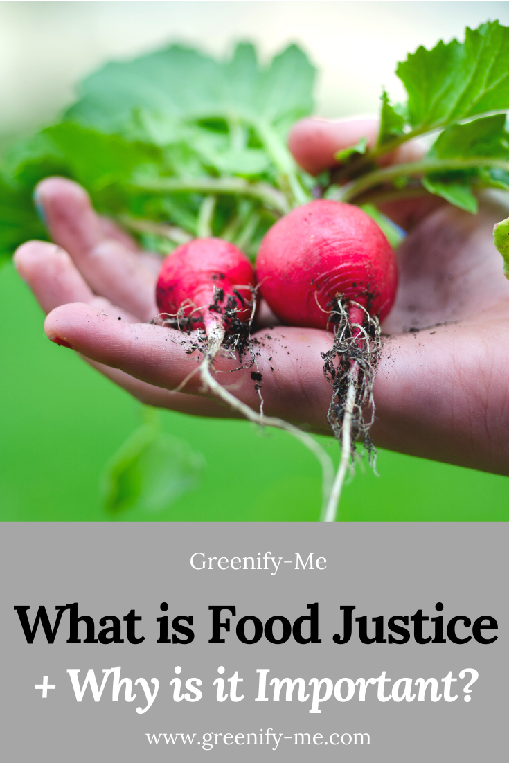 What is Food Justice + Why Is It Important?