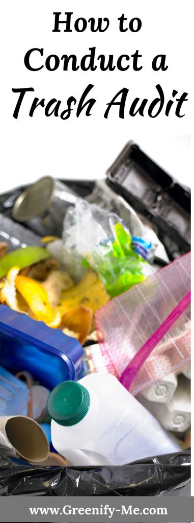 How to Conduct a Trash Audit