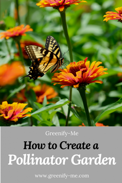 How to Create a Pollinator Garden