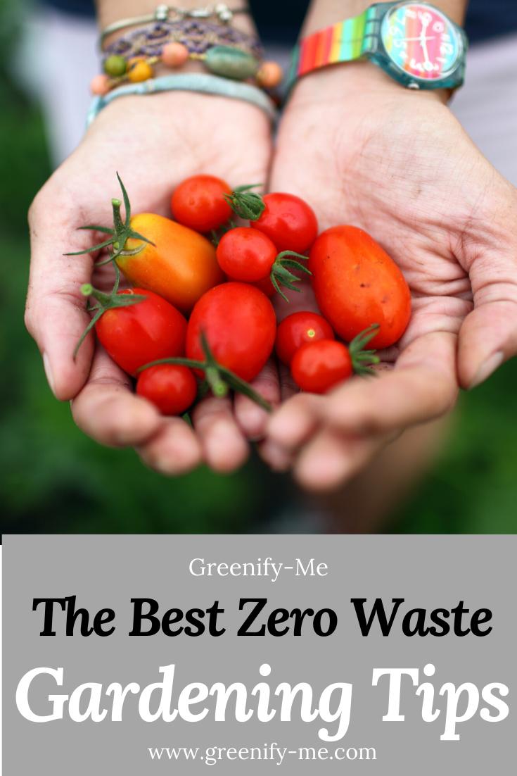 12 Zero Waste Gardening Tips