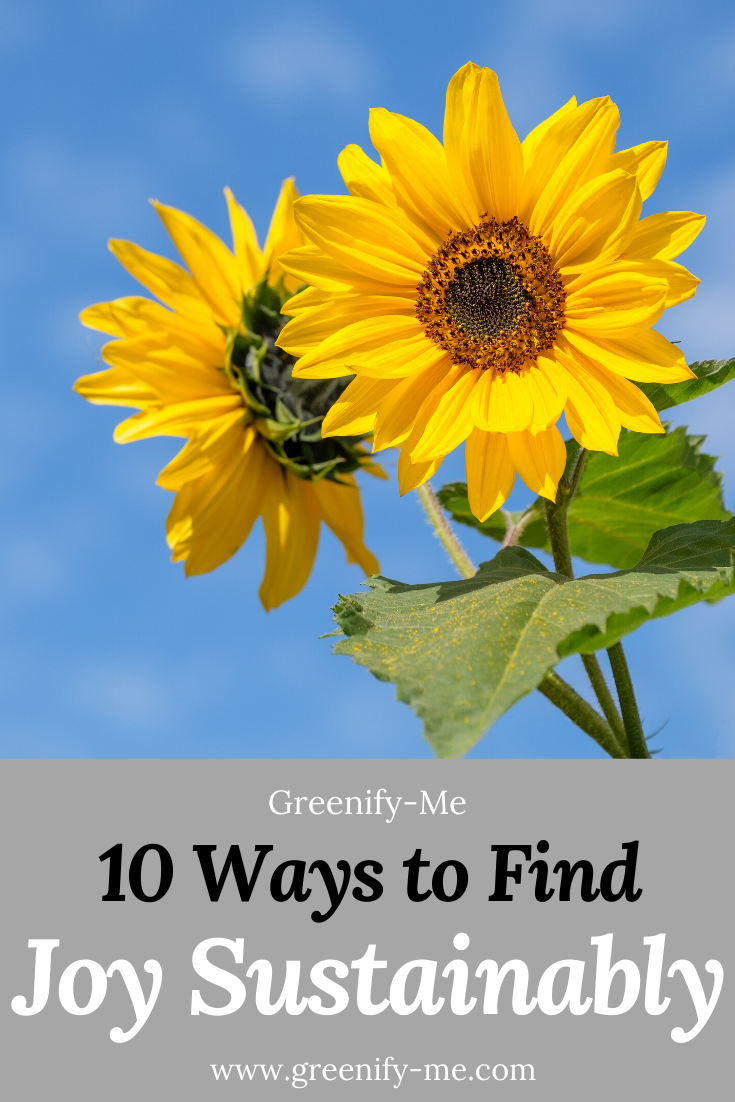 10 Ways to Find Joy Sustainably